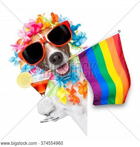 Funny Gay Homosexual  Jack Russell  Dog Proud Of Human Rights ,sitting And Waiting, With Rainbow Fla