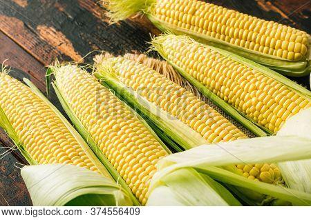 Fresh Corn On The Cob, Agriculture, Harvest