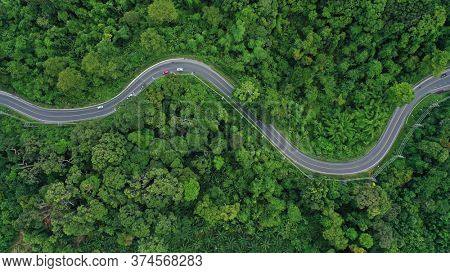 Scenic road through forest with traffic driving.