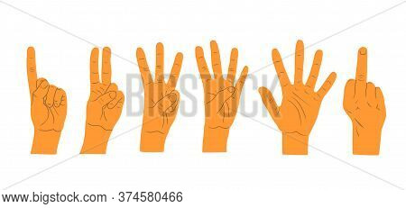 Hands Gestures Isolated On White Background. Hand Count. Flat Finger And Number Isolated On White Ba
