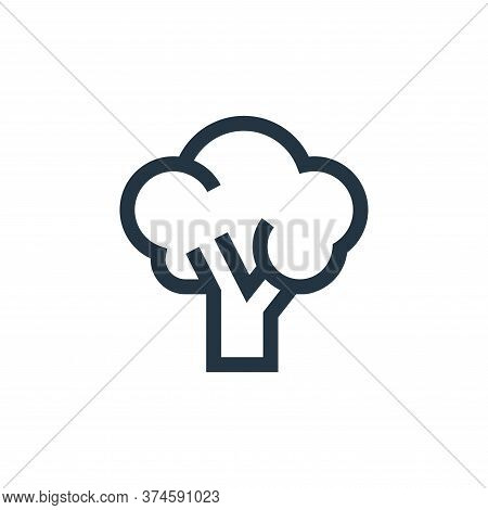 broccoli icon isolated on white background from nutrition collection. broccoli icon trendy and moder