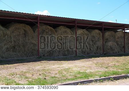 Dry Baled Hay Bales Stack, Rural Countryside Straw Background.