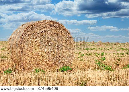 Round Straw Bales On Farmland, Straw Rolls On Farmer Field And Dramatic Cloudy Sky, Beatiful Landsca