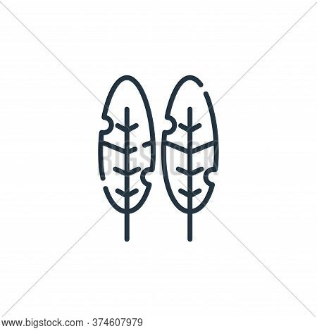 bird feather icon isolated on white background from hippies collection. bird feather icon trendy and