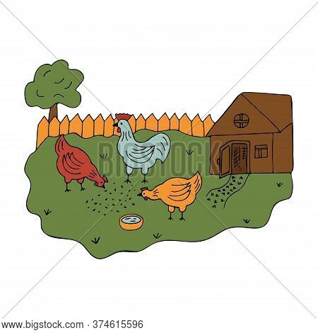 Courtyard In The Village With Walking Hens And A Cock. Colorful Vector Illustration In Cartoon Style