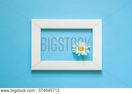 Blue Background, Frame For A Picture Or Photo And Camomile, Place For Text, Free Space, Summer, Spri