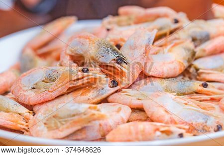 Cooked Delicious Brine Shrimp For Tasty Yummy Eating