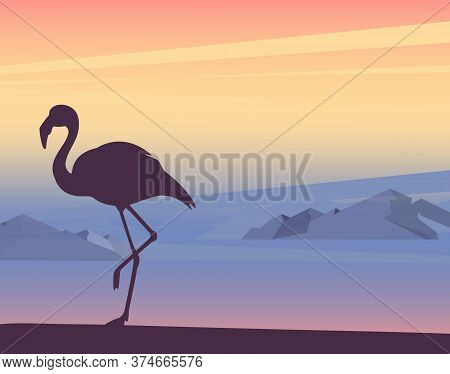 Sunset Or Sunrise In Ocean Wiht Flamingo Tropical Bird, Nature Landscape Background, Pink Clouds In