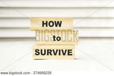 How To Survive Wooden Blocks In Box And Outside. Survival Concept. Risky Business Startup Concept.