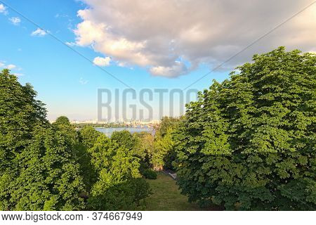 Kyiv's Nature Landscape. Wide Angle Landscape View Of Old Chestnuts  Trees In The Beautiful Park Spi