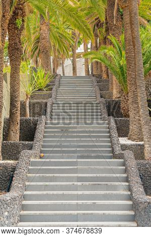 Stone Staircase Surrounded With Palm Trees On The Street Of Puerto De La Cruz, Tenerife, Canary Isla
