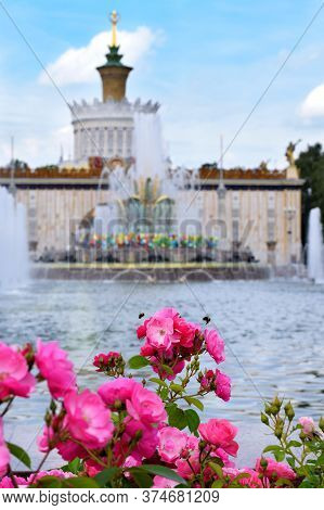 Moscow, Russia - July 2, 2020: Pink Roses And Bumble Bees. The Stone Flower Fountain And Ukraine Pav