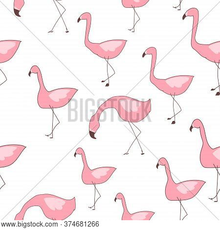 Seamless Pattern Flamingo. Vector Tropical Seamless, Flamingo Textile Design