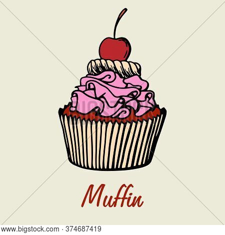 Muffin Simple Illustration . Cupcake With Different Flavors . Colored Hand Drawn Muffin Cookie .