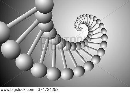 Monochrome Gene Spiral Illustration. Fractal Spiral. Vector Illustration