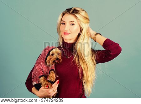 Woman Carry Yorkshire Terrier. Girl Attractive Blonde Hug Cute Dog. Apparel And Accessories. Pet Sup