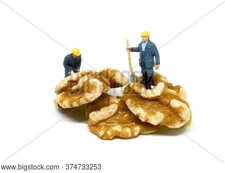 Miniature Workers On Natural Walnut. Miners At Work Tiny Figure. Challenge And Achievement On Teamwo