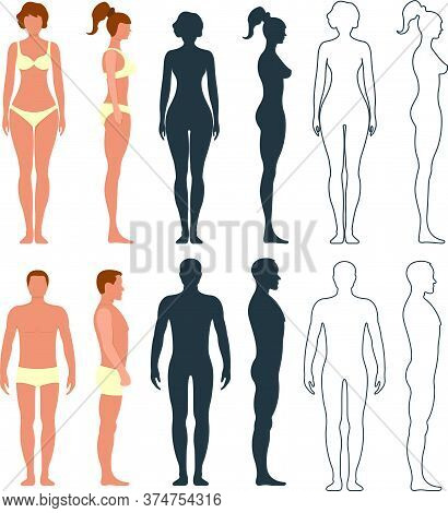 Male And Female Anatomy Human Character, People Dummy Front And View Side Body Silhouette, Isolated