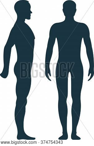 Male Anatomy Human Character, Man People Dummy Front And View Side Body Silhouette, Isolated On Whit