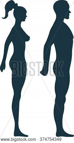 Female And Male Anatomy Human Character, Woman Man People Dummy Front And View Side Body Silhouette,