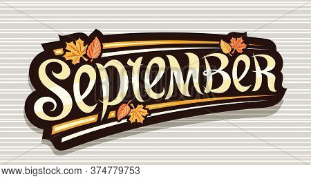 Vector Banner For September, Black Logo With Curly Calligraphic Font, Autumn Leaves And Decorative S
