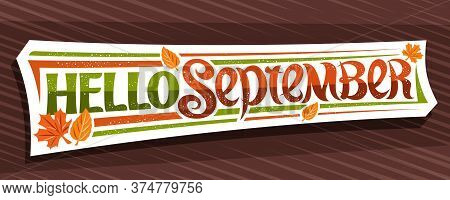 Vector Lettering Hello September, White Label With Curly Calligraphic Font, Decorative Autumn Leaves