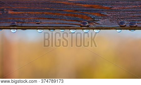 Wooden Railing Covered With Dew Drops On On A Blurred Natural Background. Web Banner.