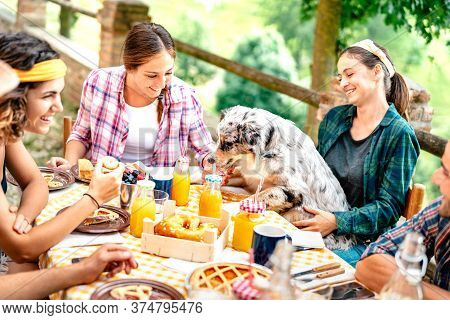 Young People On Healthy Pic Nic Breakfast With Cute Puppy At Countryside Farm House - Alternative Li