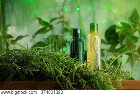 Bottle With Tarragon Oil. Fresh Green Tarragon And Essential Oil