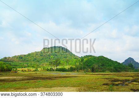 Farmers Burned After Harvesting, View Of Cassava Plantations And Rubber