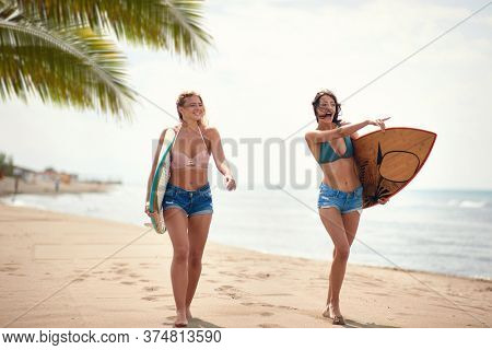 Young sexy female surfers walking a beach looking for perfect spot for surf