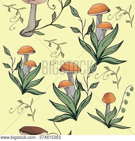 Mushrooms Edible Vegeterian Organic Mushrooming Seamless Pattern, Vector Illustration.  Boletus, Asp