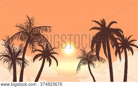 Sunset In Cloudy Haze Silhouettes Of Palm