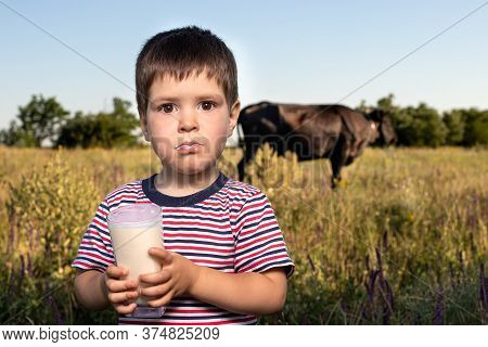 A Small Child Boy In A Striped Bright T-shirt Holds And Drinks Natural Cows Milk Against A Black Cow