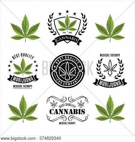 Vintage Marijuana Cannabis Hemp Pot Leaf Thc Cbd Logo Design