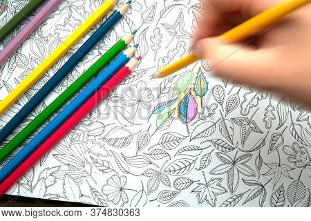 An Image Of A New Trendy Thing Called Adults Coloring Book. In This Image A Person Is Coloring An Il