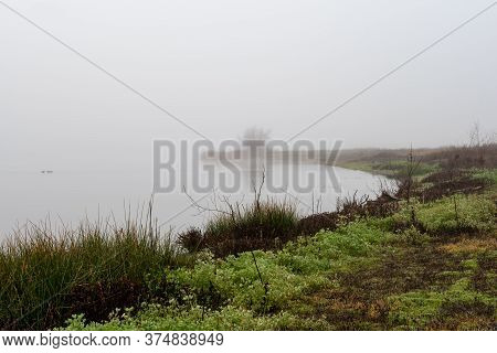 A Foggy Margin Of A Lake On A Foggy Morning That Becomes More And More Unclear With Distance, Myster