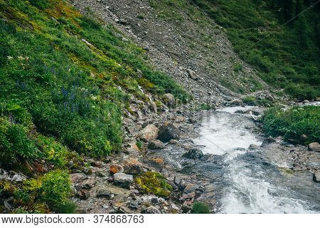 Wonderful Scenic Landscape With Rich Flora Near Mountain River. Highland Scenery With Fresh Greenery