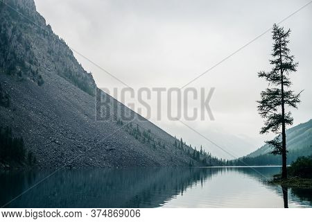Atmospheric Gloomy Landscape With Conifer Tree On Shore Of Mountain Lake In Rainy Weather. Coniferou