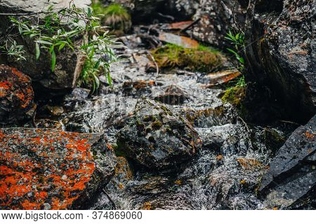 Beautiful Mountain Creek Among Rocks. Atmospheric Landscape With Stones With Mosses And Lichens In S