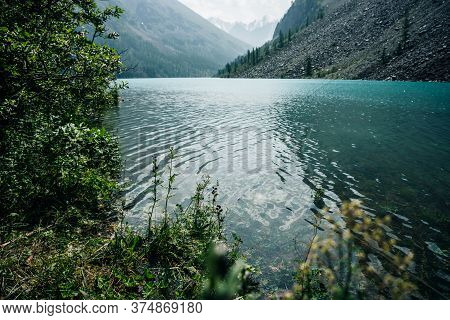 Amazing View Through Trees To Snow Mountains And Meditative Ripples On Azure Clear Calm Water Of Mou