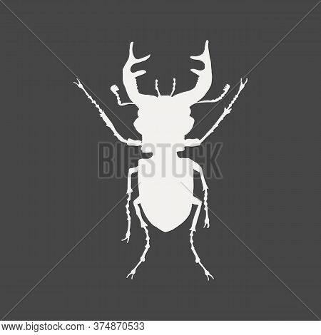 White Silhouette Of A Stag Beetle Isolated On Black Background. Lucanidae Male. Insect Vector Illust