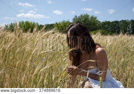 Woman Enjoying Nature In Meadow. Sexy Girl Collect Wildflowers. Pure Sensuality And Sexuality. Innoc