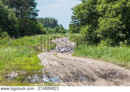 A Winding Dirt Narrow Road Leads Through Forest. The Rain Formed Large Puddles. There Are Traces Of