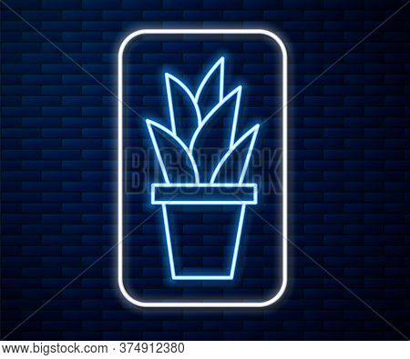 Glowing Neon Line Plant In Pot Icon Isolated On Brick Wall Background. Plant Growing In A Pot. Potte