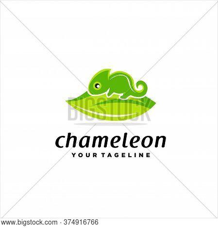 Chameleon Cute Modern Illustration Logo Vector, Chameleon Logo Symbol Icon, Vector Illustration Of A