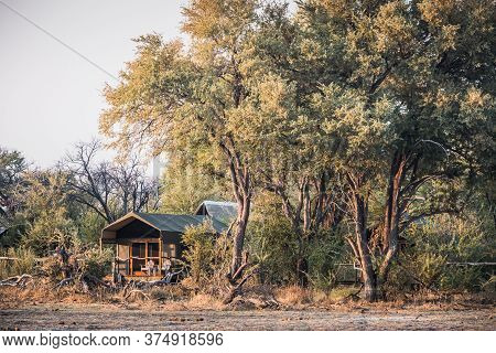 Luxury Safari Tent In A Tented Camp In The Okavango Delta Near Maun, Botswana, Africa Under Large Tr