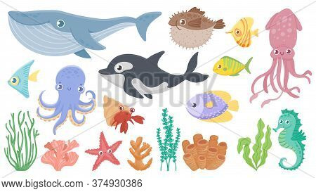 Cartoon Ocean Animals. Funny Blue Whale, Cute Hedgehog Fish And Orca. Octopus, Squid And Seahorse. U
