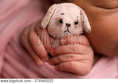 Tiny Toy In The Hands Of A Newborn Baby