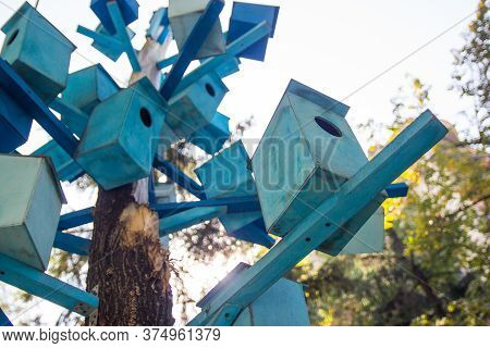 Lots Of Blue Wooden Birdhouses On A Tree. Condominium Concept.